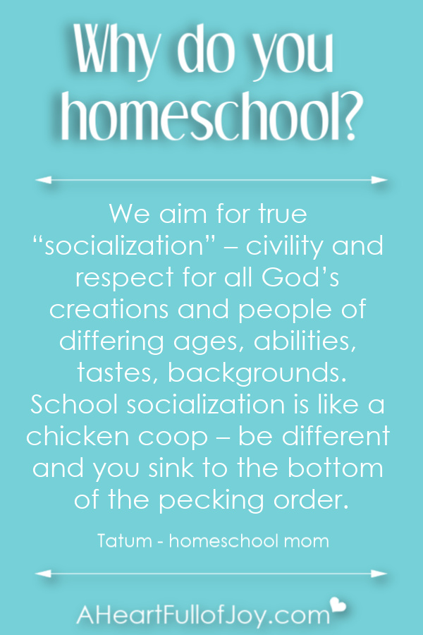 Why do parents homeschool their kids?